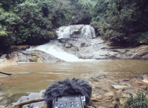 D100_Waterfall
